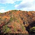 2011 Nov 8 鳴子峽 (143)_調整大小.JPG