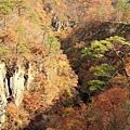 2011 Nov 8 鳴子峽 (137)_調整大小.JPG