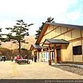 2011 Nov 8 鳴子峽 (35)_調整大小.JPG
