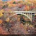 2011 Nov 8 鳴子峽 (6)_調整大小.JPG