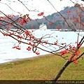 Nov 9 十和田湖 (213)_調整大小.JPG