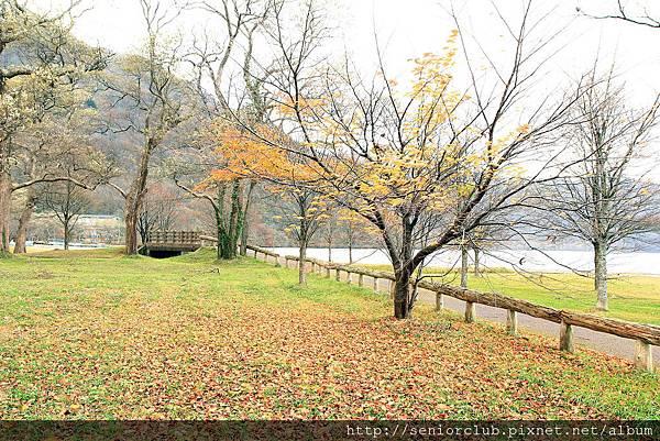 Nov 9 十和田湖 (163)_調整大小.JPG