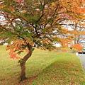 Nov 9 十和田湖 (112)_調整大小.JPG