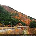 Nov 9 十和田湖 (49)_調整大小.JPG