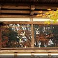 2011 Nov 10 角館 (125)_調整大小.JPG