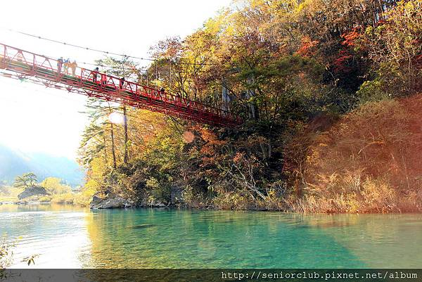 2011 Nov 10 抱返溪谷 (30)_調整大小.JPG