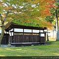 2011 Nov 11 田澤湖 (46)_調整大小.JPG