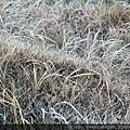 2011 Nov 11 駒之岳觀光 (200)_調整大小.jpg