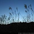 2011 Nov 11 駒之岳觀光 (10)_調整大小.JPG