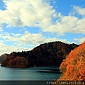 2011 Nov 10 玉川水壩 (144)_調整大小.jpg