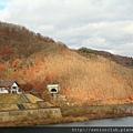 2011 Nov 10 玉川水壩 (132)_調整大小.JPG