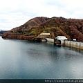 2011 Nov 10 玉川水壩 (112)_調整大小.jpg