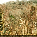 2011 Nov 10 玉川水壩 (52)_調整大小.jpg