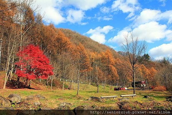 Nov 9 八幡平 松川溪谷 (97)_調整大小.JPG