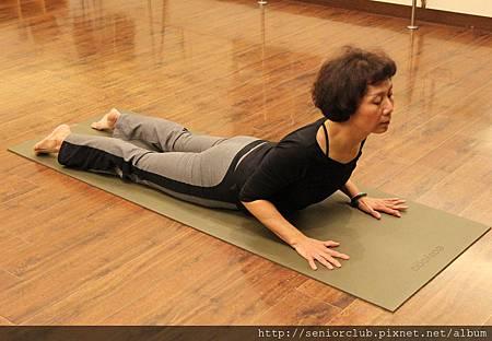 曾瑤瑜珈 2011 Dec  (37).jpg