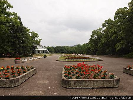 2012 京都植物園_06_調整大小