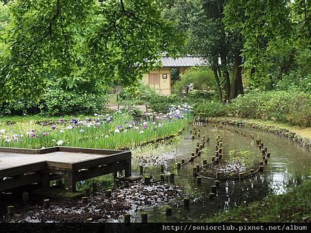 2012 京都植物園_09_調整大小