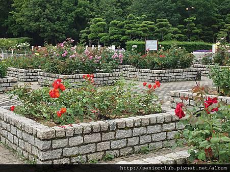 大阪長居植物園 (0031)_調整大小