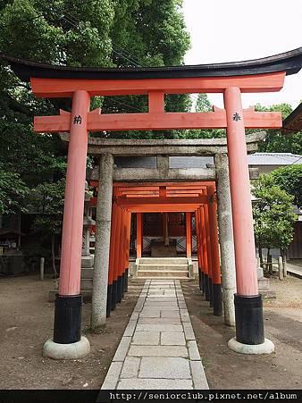 2010 京都藤森神社 (0071)_調整大小