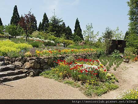 2010 比叡山山頂花園 (004)_調整大小