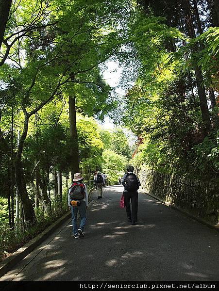 2010 比叡山 (12)