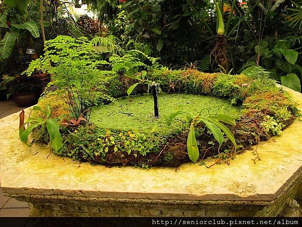 2012 USA SF Garden (376)_調整大小