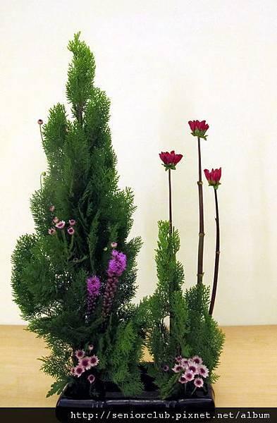 2012 社區聖誕插花_09_調整大小