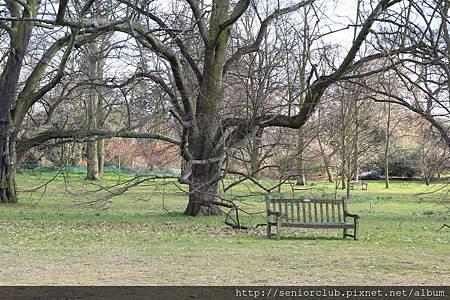 2013 April Kew Garden outdoors  (34)_調整大小