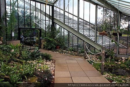 2013 April Kew Garden Princess of wales Conservatory (10)_調整大小