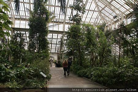 2013 April Kew Garden temperate house (23)_調整大小