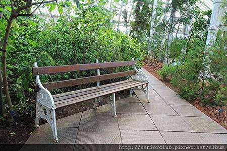 2013 April Kew Garden temperate house (40)_調整大小