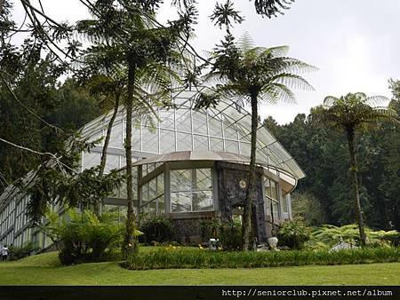 2014 AUG BALI 植物園  (13).jpg