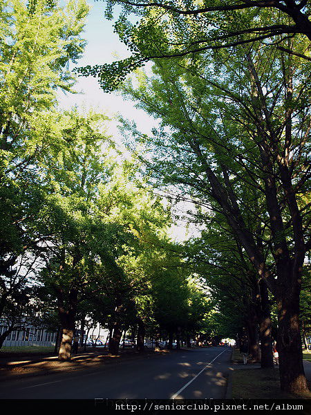 2009 北海道大學 (161).jpg