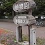 北海道大學_植物園 (6).jpg