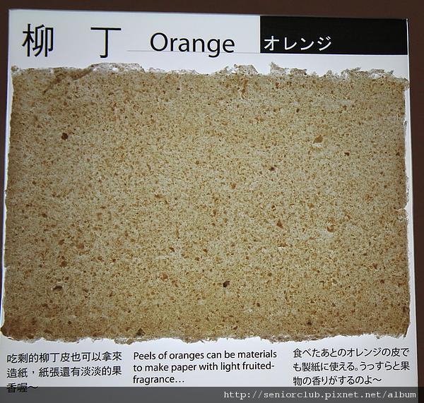 花博文化紙館 (93)_調整大小.jpg