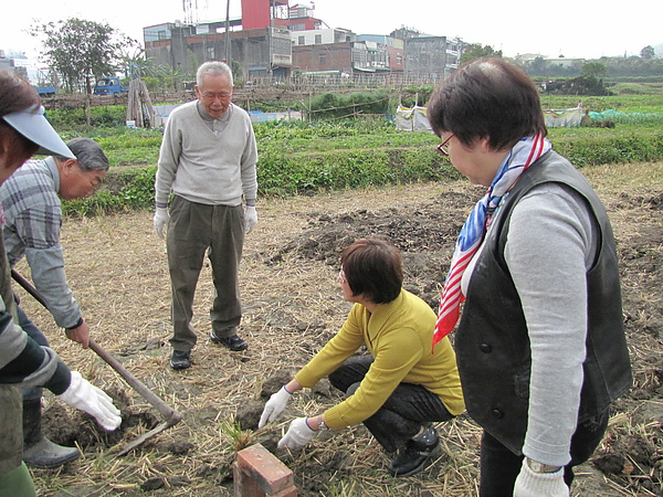 2011 Jan 7 竹東烤番薯 (8).JPG