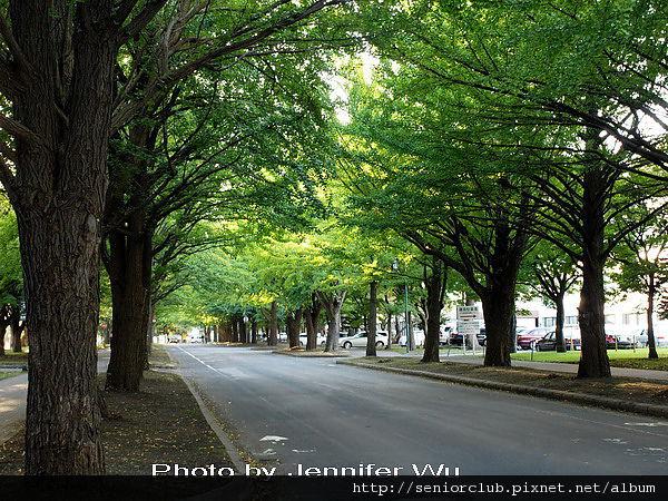北海道大學 blog _08.jpg