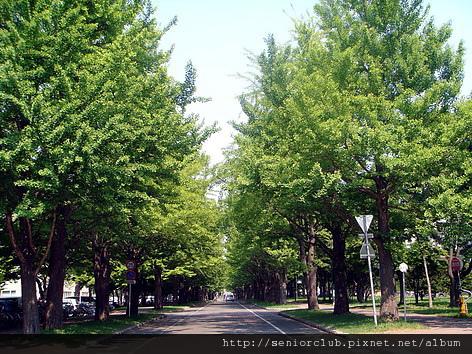 北海道大學 blog _05.jpg