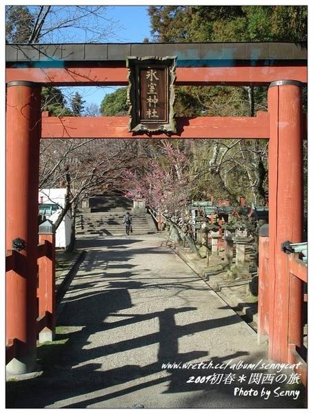 途中經過的神社