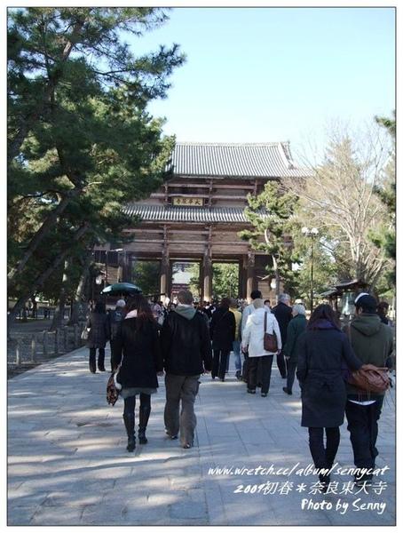 前往東大寺