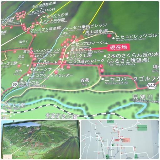 北海道之旅- (123).jpg