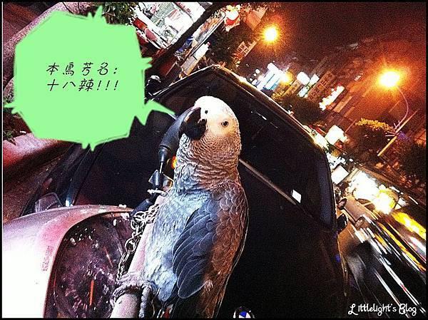 十八辣- (10).jpg