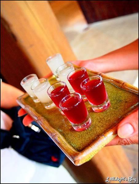 奇萊亞酒莊 (6).jpg