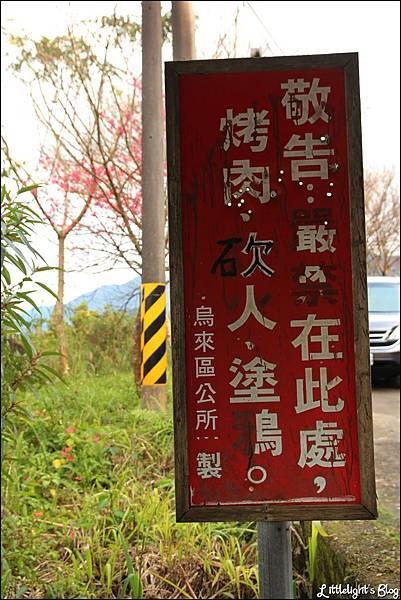 烏來西羅岸路櫻花- (8).JPG