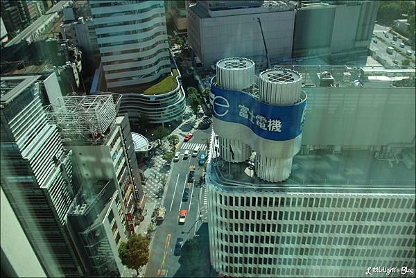 東京半島酒店- (29)