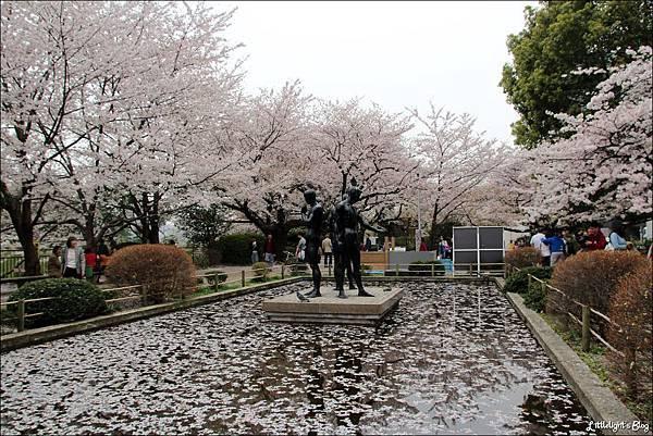 2013 東京賞櫻- (36)