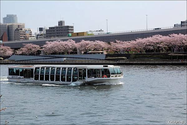 2013 東京賞櫻- (63)
