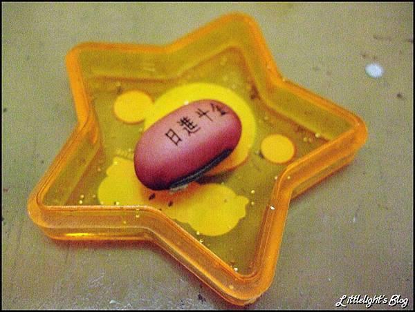 紅鳳豆生長史-1.jpg