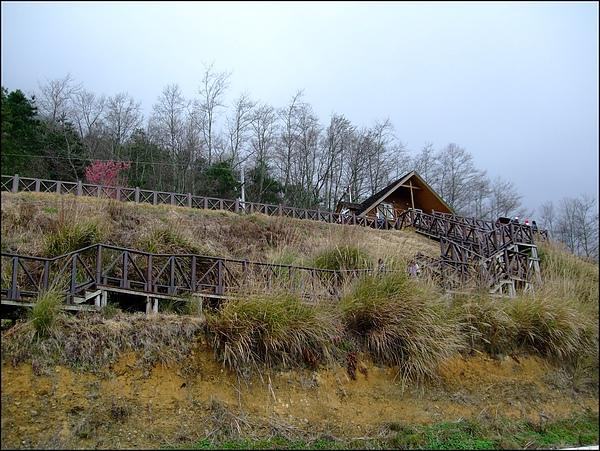 武陵農場- (48).jpg