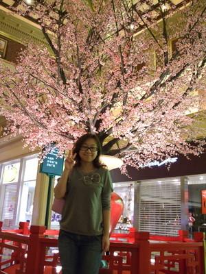 130.櫻花樹-1
